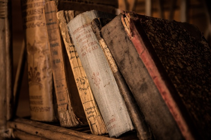old-books-436498_960_720-2